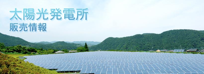太陽光発電所販売情報